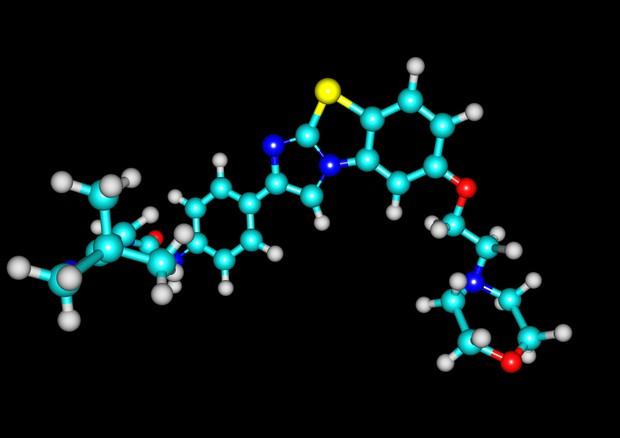 Leucemia, scoperti meccanismi con cui le cellule tumorali sfuggono al sistema immunitario dopo il trapianto. Dal gruppo di ricercatori italiano il primo passo verso terapie mirate.